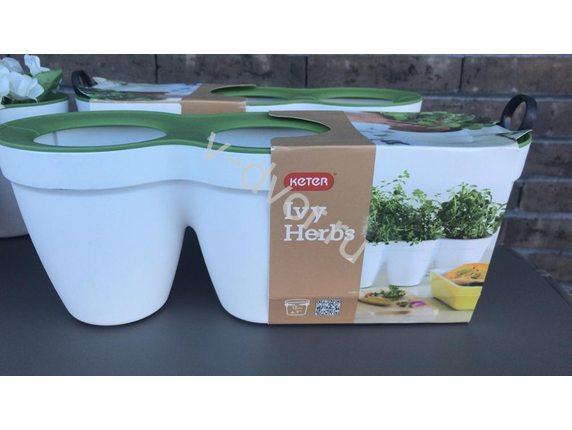 Кашпо Ivy Herbs